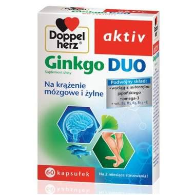 doppelherz-aktiv-ginkgo-duo-60-kaps-p-